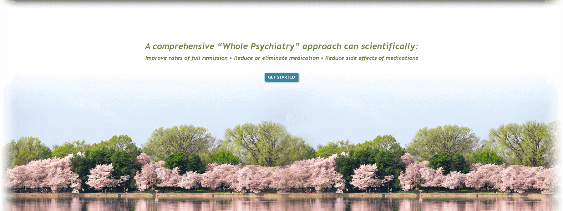 https://wholepsychiatry.com/wp-content/uploads/2019/04/hero-2.png